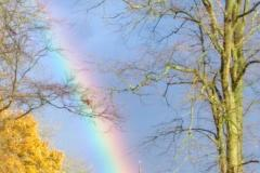 Reader's Photo: Rainbow over Alderley Edge cemetery