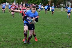 Rugby:  Wolves crash to third successive defeat of the year