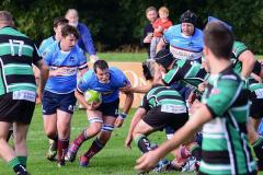 Rugby: Wolves lose at home to Lymm