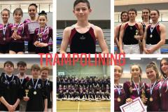 Trampolinists bounce their way to national finals