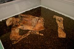 Tribute to Lindow Man 30 years on