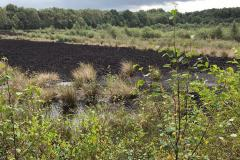 Reader's Letter: Residents demand a say on the future of Lindow Moss