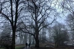Reader's Photos: The fog before dark