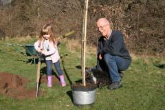 Friends plant commemorative tree in town park
