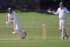 Cricket: Bumper weekend for Squirrels