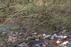 Call for action to clear rubbish from River Bollin