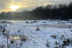 Work to commence on the restoration of Lindow Moss