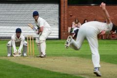 Cricket: Squirrels fall short in 7 wicket Loss
