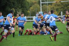 Rugby: Wolves suffer disappointing loss after such a promising start