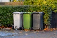 Council seeks to launch food waste recycling collection