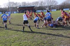 Rugby: Struggling Wolves suffer another loss at Sandal