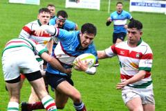 Rugby: Disappointing loss for Wolves in local derby